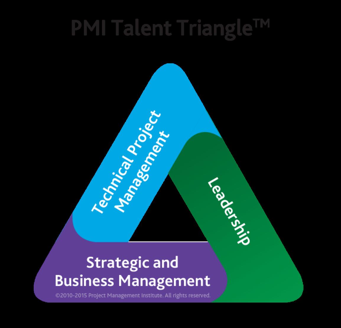projektové riadenie kurzy PMI triangel
