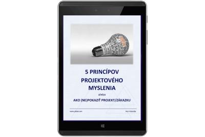 projektové riadenie princípy