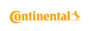 projektové riadenie referencie continental